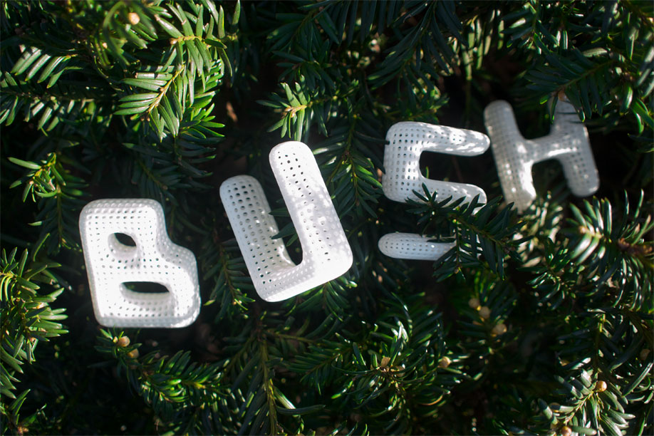 Bush, spelled with the Cloudswimmers Alphabet